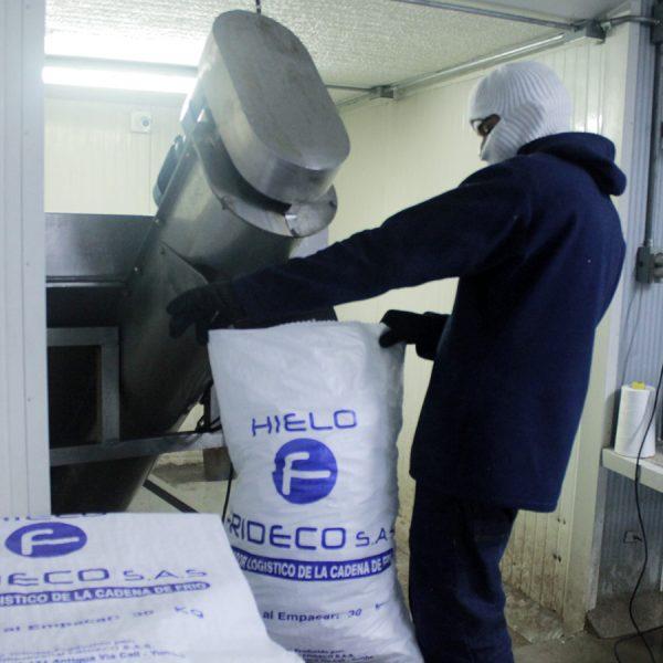Proveedores, distribuidores y fabricantes de Hielo en Cali